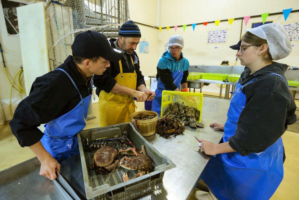 Formation pratique aux fruits de mer.